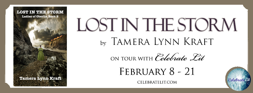 Lost in the Storm FB Banner