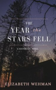 The Year the Stars Fell